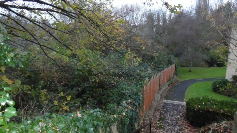 From Pitman Court Rd looking down to Lam Brook, the new path would come up to the left of the fence.