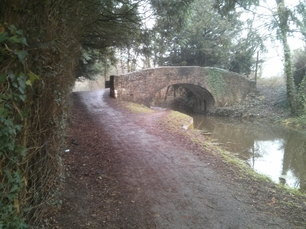 Cyclists used to try and prevent towpath repair (2/4)